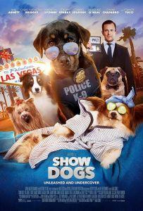 Magic & Ilusion Consultation - Show Dogs